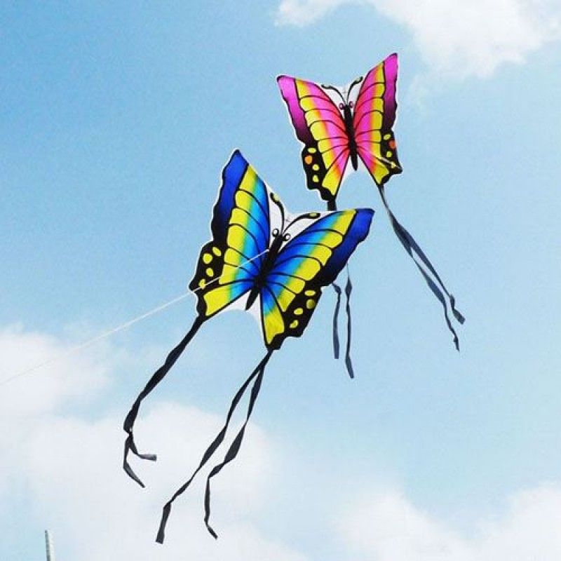 Wholesale Butterfly 2pcs/lot Kite with Hand Line