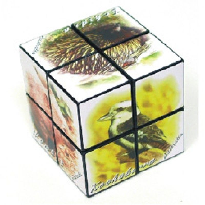 Wholesale Rubiks Cube 2 x 2